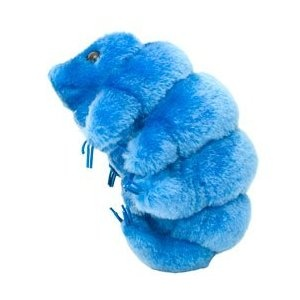 1000 images about project plush tardigrade on pinterest