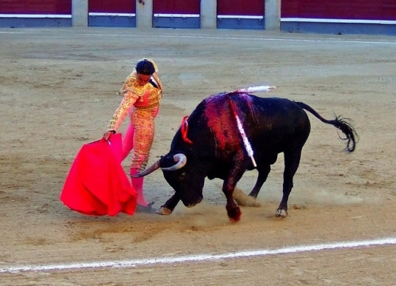 108 best images about Spanish Traditions on Pinterest