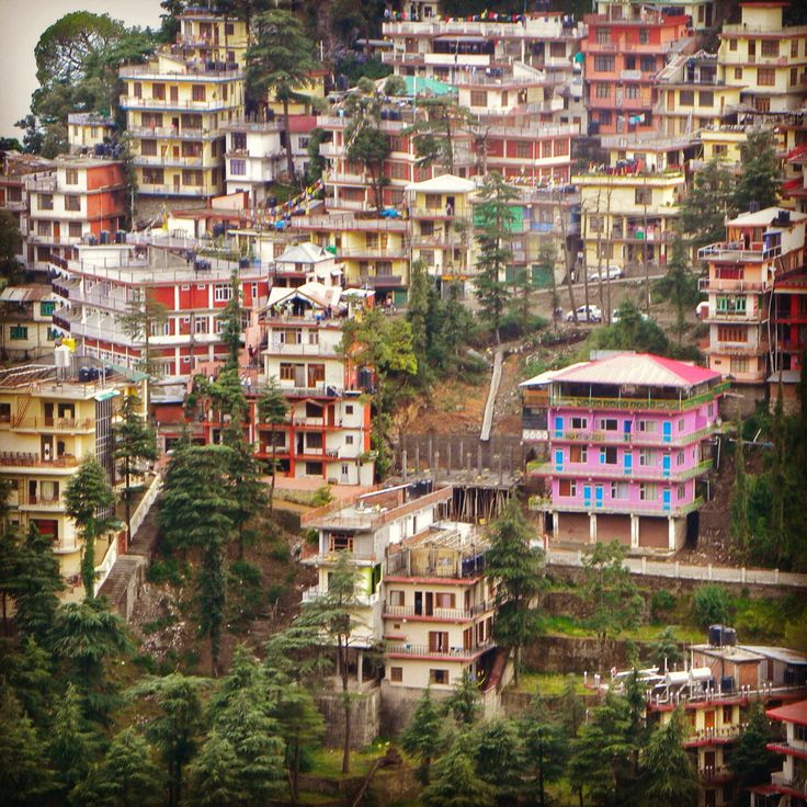 Houses in Dharamsala, India