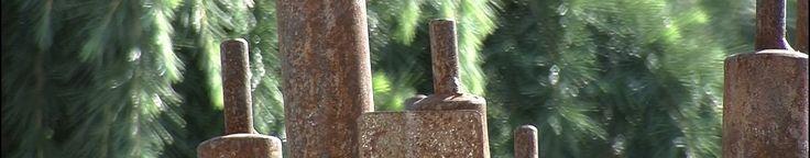 Immergrüne Garten-Oase ⛒ Dekorative Rohrkolben aus Stahl. Die Oberfläche ist  mit Rost überzogen. ⛒ #Gartendekoration ⛒ #Gartenkunst ⛒ #KunstImGarten. 💰💰💰 Mehr Tipps und tolle Gutscheine auf  #gutscheingarten.info.