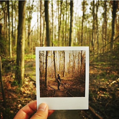 25 Creative Examples of Polaroids in Pictures