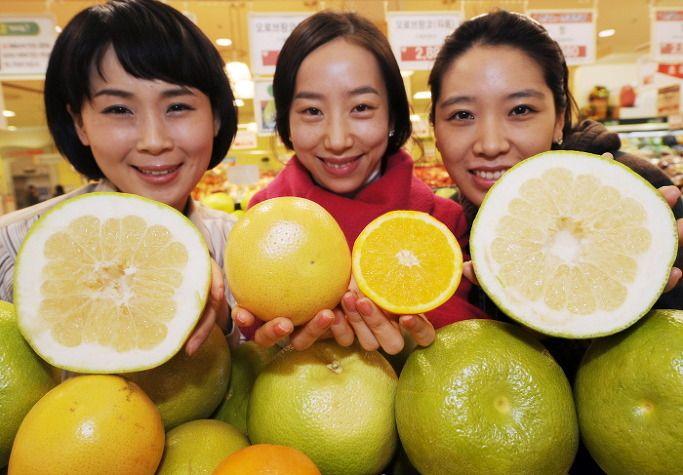 오렌지와 자몽을 좋아하시나요? 두 과일을 한번에 느낄수 있는 과일 '오로브랑코'