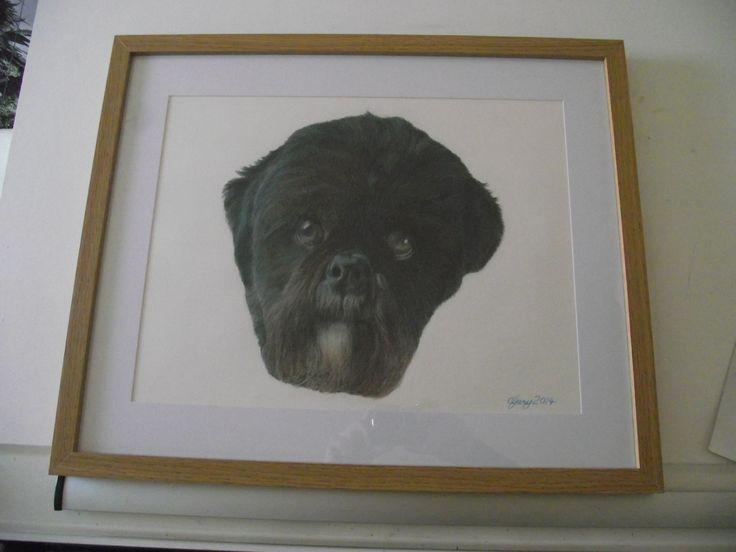 Alfie framed.