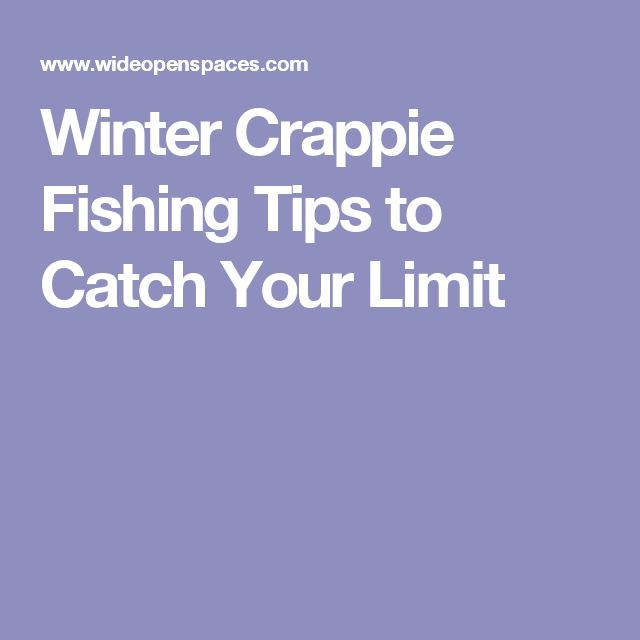 The 25 best crappie fishing ideas on pinterest bass for Winter bass fishing tips