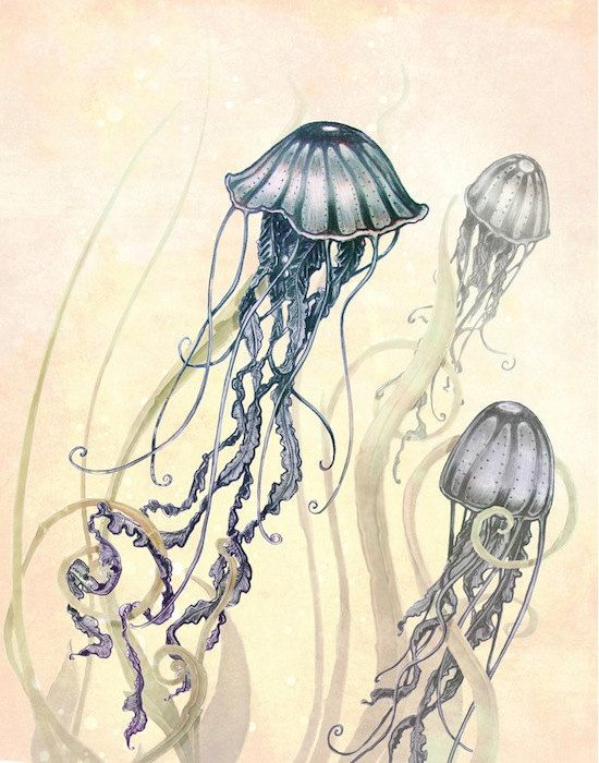 Jellyfish Print  - Ocean Art  Print - Seaside Art -  Print -  purple - blue - Yellow - COLOR - plum