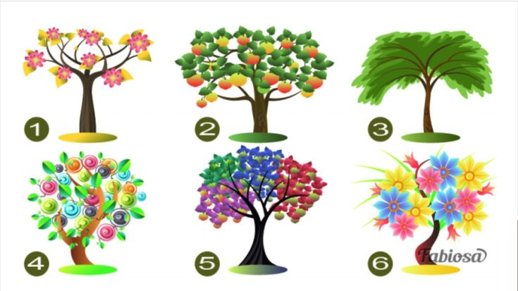 Nižšie nájdete obrázky 6 rôznych stromov. Vyberte si ten, ktorý Vás na prvý pohľad nadchol najviac, či už kvôli farbe alebo tvaru a prečítajte si, čo o Vás tento výber prezrádza. Sedí pridelený popis aj na Vás?