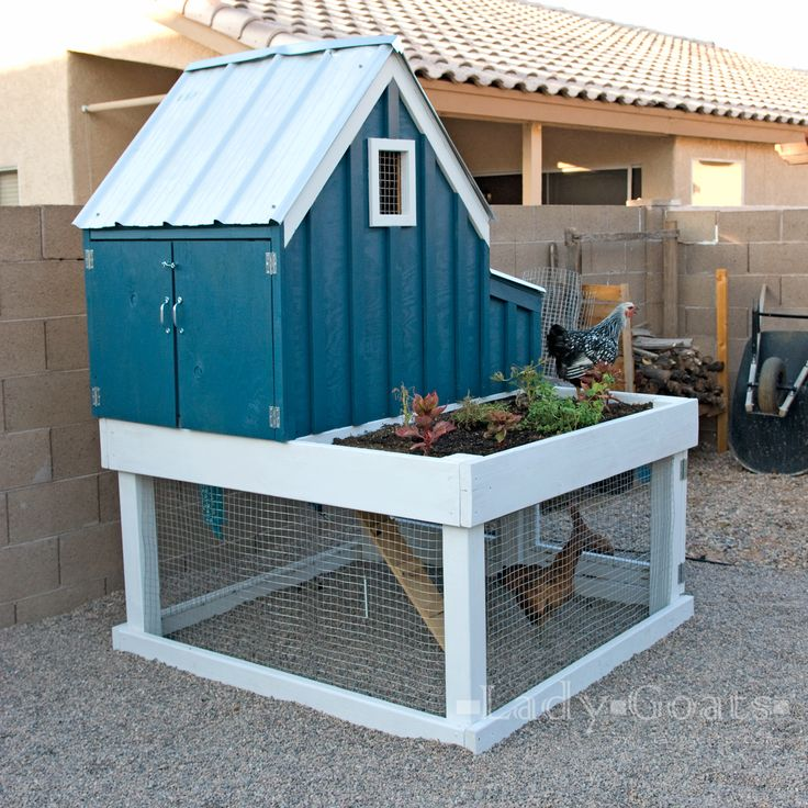 34 Free Chicken Coop Plans Ideas That You Can Build On: 1000+ Images About Chicken Coops On Pinterest