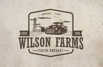 New Vintage Logo Design Retro Color Palettes 44 Ideas Retro Logo Design Vintage Logo Design Farm Logo