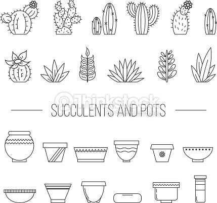 Vector Art : Set of succulent plants, cactuses and pots.