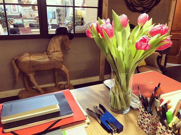 Primi colori di primavera, tulipani rosa intenso in ufficio. Le Sorelle Martini