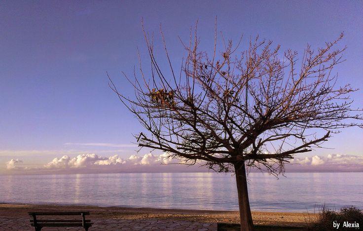 https://flic.kr/p/s7qEgx | Pefkohori beach | Halkidiki beach winter in its best mood..