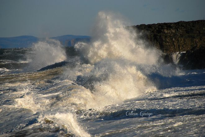 Raw Beauty, Hall's Harbour, December 4, 2014