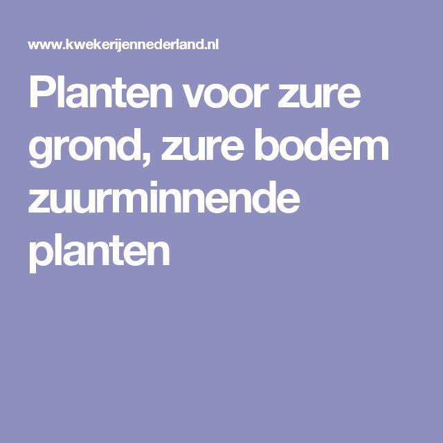 Planten voor zure grond, zure bodem zuurminnende planten