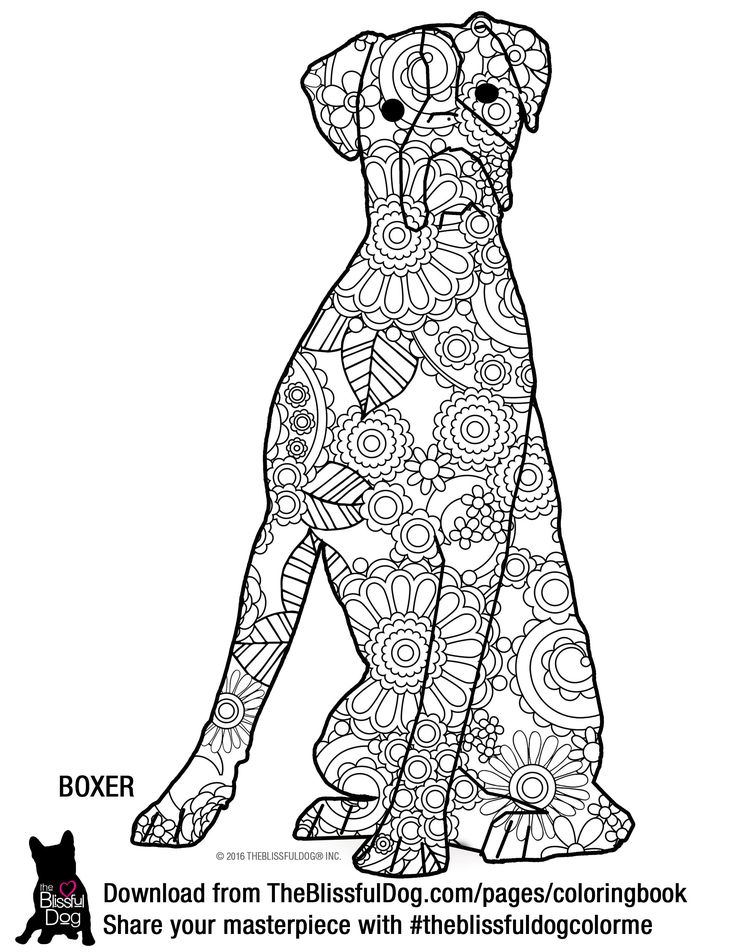 83 Coloring Pages Of Coon Dogs