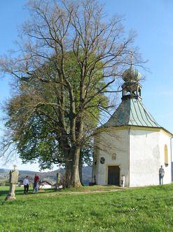 Neukirchen beim Heiligen Blut (Cham) BY DE