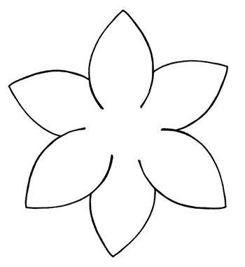 Diagram showing arrangement petals.
