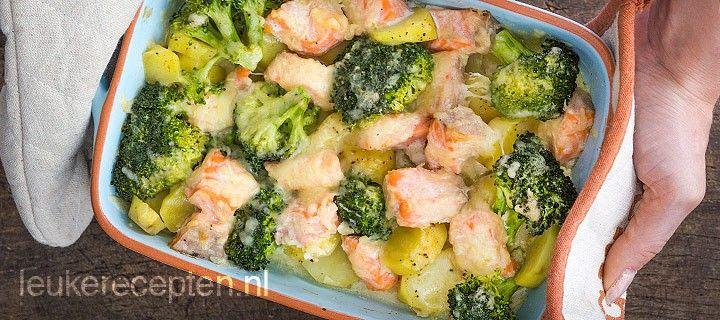 Zalm broccoli schotel