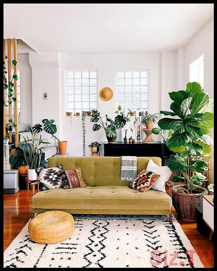 Apartment Living Room, How To Decorate Your Living Room