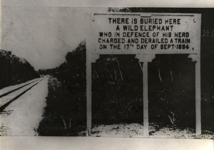 Commemorative sign for a fearless elephant, Telok Anson, Perak, Malaysia