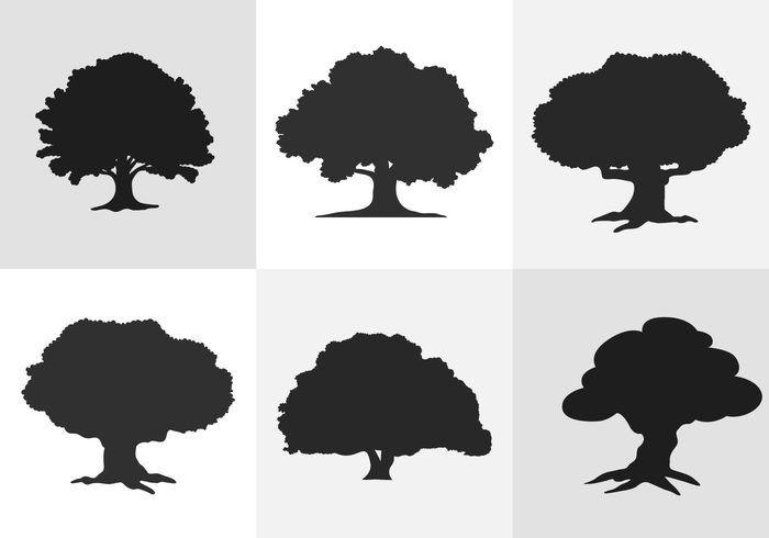 oak tree silhouette де�ево pinterest tree silhouette