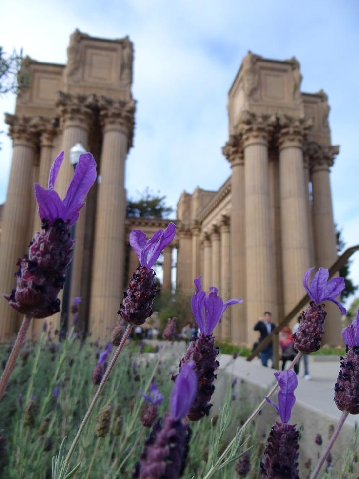Fine Arts Museum of San Francisco