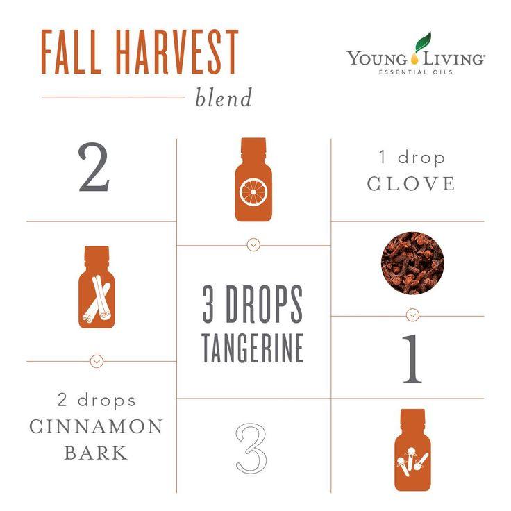 Young Living Essential Oils: Fall Harvest Blend   WWW.THESAVVYOILER.COM