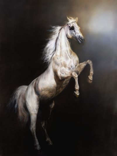 Gallery For > White Arabian Horse Rearing