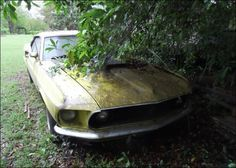 '69 Mustang Found Rotting Away With Only 69K Original Miles