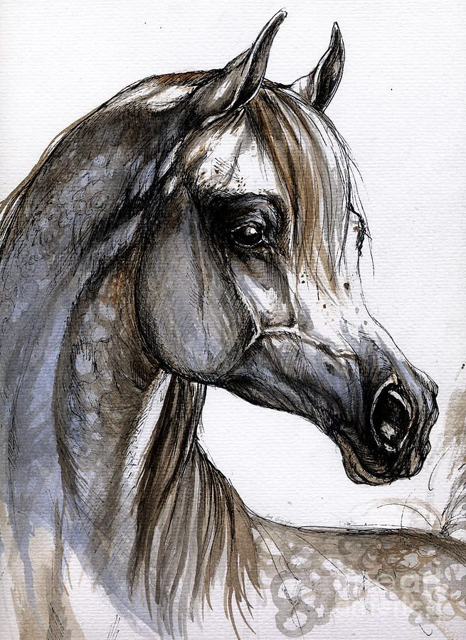 Watercolor and pen and ink - magnificent!
