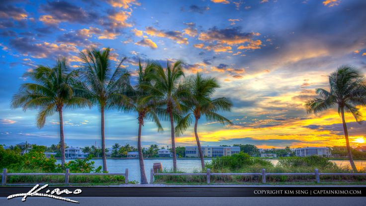Beautiful coconut trees along the waterway at Coral Cove Park during sunset. HDR image created using Photomatix Pro and Topaz software.