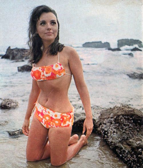Bikini photos of dawn wells