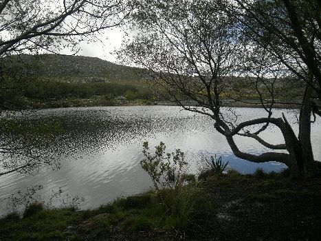 The dam in Silvermine Nature Reserve, Cape Town, South Africa