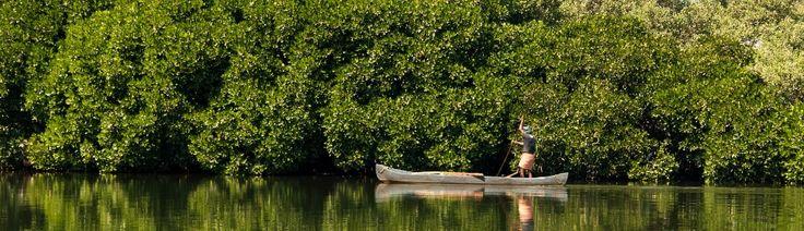 Payyanur: Kerala's Hidden Treasure
