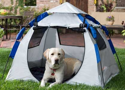 Large Dog Tent - Hiking c&ing and doing activities overnight outside with your dog is & The 25+ best Dog tent ideas on Pinterest | Cat teepee Pet magic ...