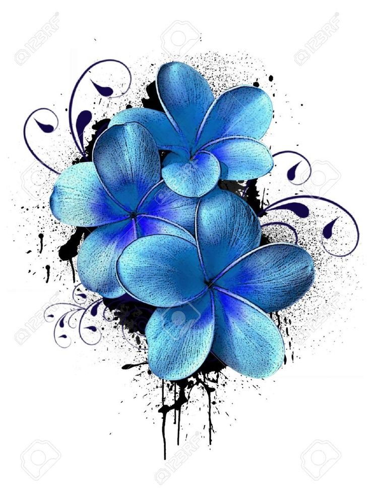 Plumeria Hawaiian Flower Tattoos Colorful