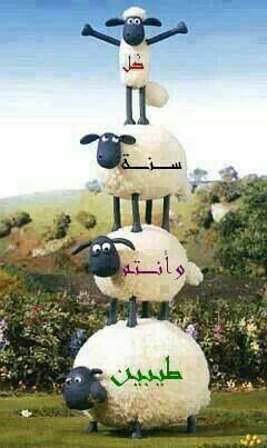 Happy Eid Al-Adha.(Today)♥