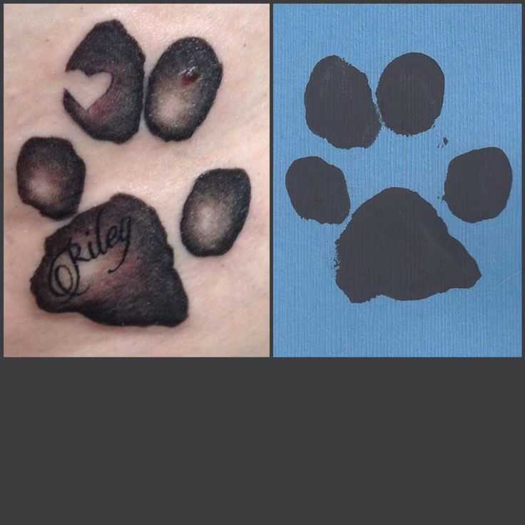 Paw Print Toe Tattoo: 17 Best Images About Tattoos