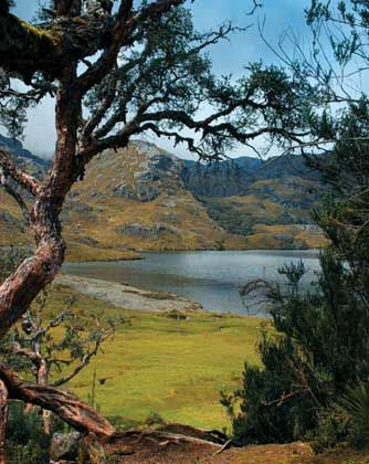 Parque Nacional Cajas, Cuenca, Ecuador.  HOST FAMILIES NEEDED for high school exchange students from Ecuador.  Contact OCEAN for more information.  Toll-Free: 1-888-996-2326; E-mail: info@ocean-intl.org; Web: www.ocean-intl.org