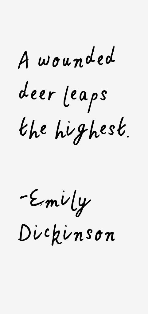 aos belonging essay emily dickinson Study notes and more for hsc - higher school certificate  essay for year 11  advanced english course - emily dickinson poetry and donnie darko.