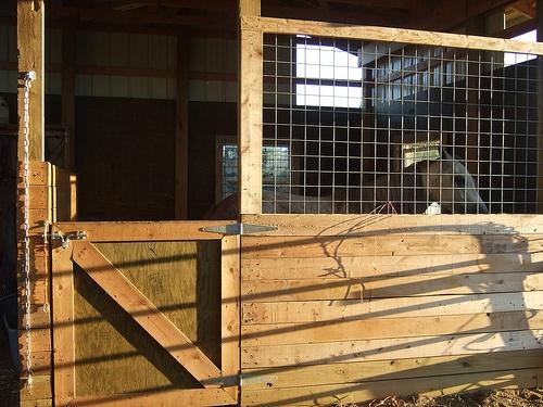 Hand built horse stalls