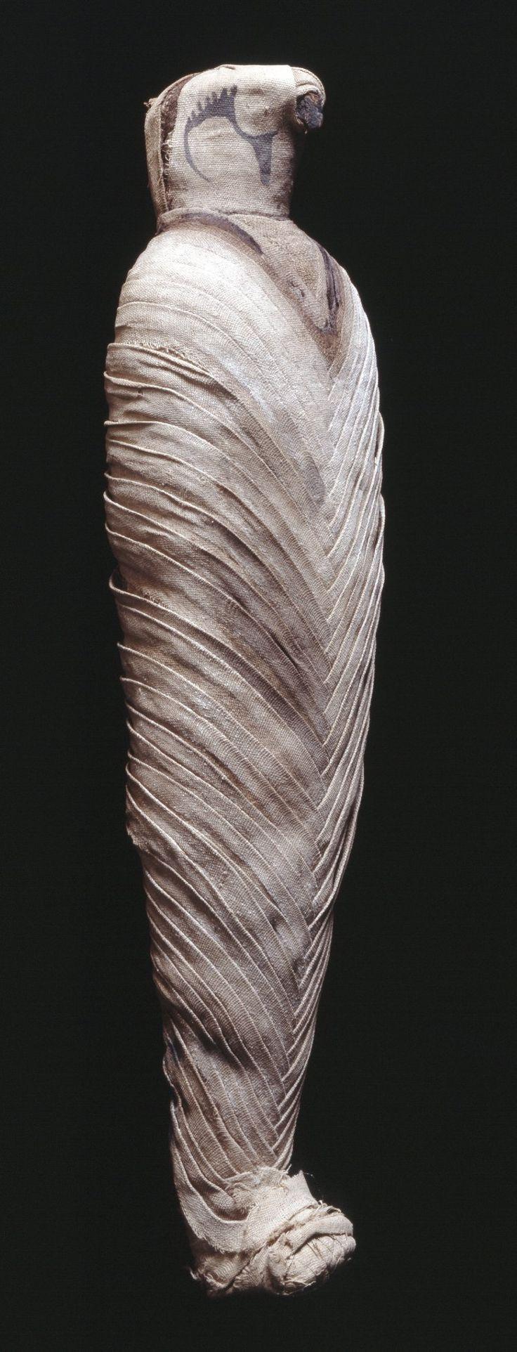 Mummy of a hawk,wrapped in narrow bandages of fine linen arranged in a herring-bone pattern. EGYPT www.realegypt.com