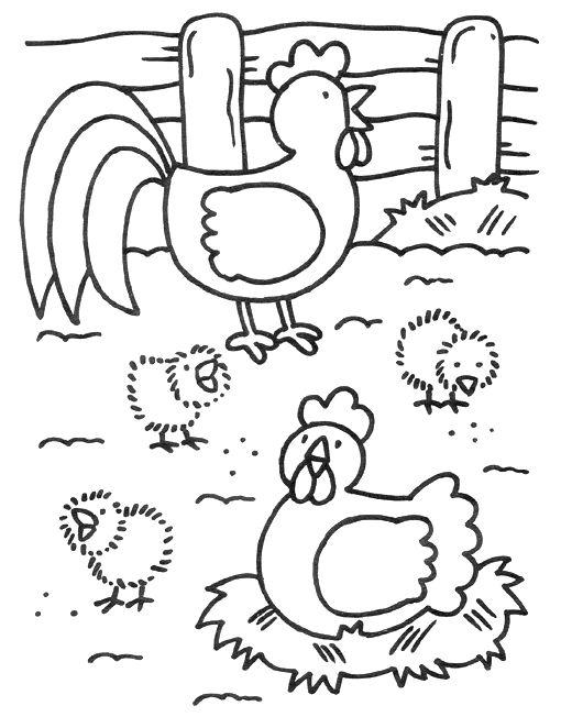 kippenhok kleurplaat - Google zoeken