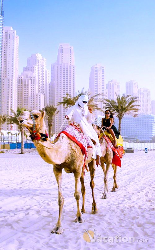 Camel ride in dubai #deffo on my bucket list