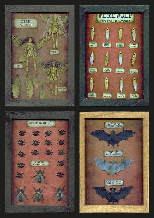 halloweencrafts:  DIY Cheap, Easy & Creepy Specimen Shadow Boxes Tutorial with Free Labels Printable from Seeing Things here.