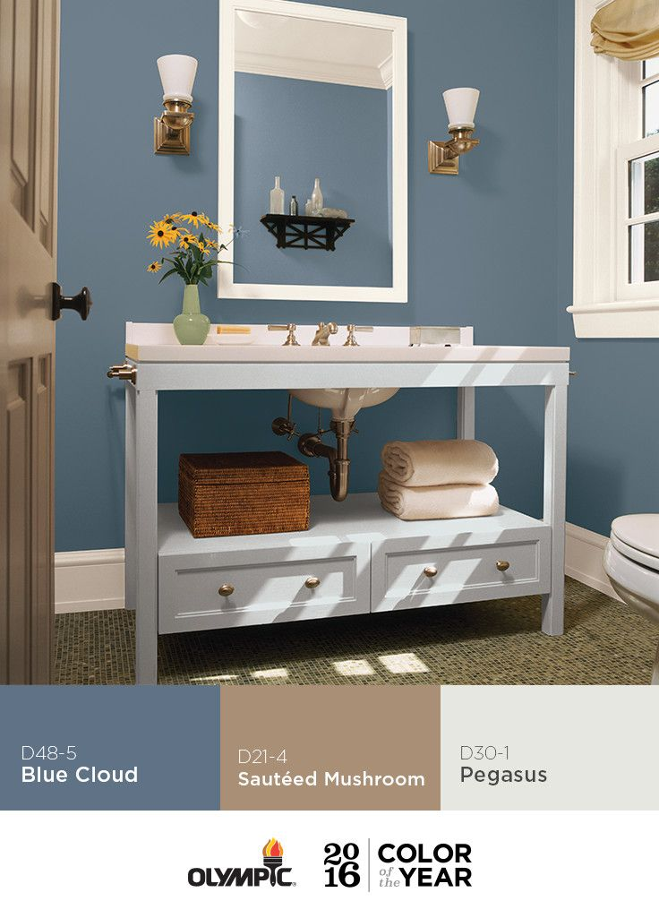 27 best images about olympic 2016 paint color of the year for Top bathroom colors 2016