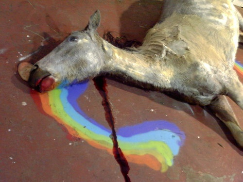 Little Cute Girl Wallpaper De Horned Dead Unicorn Graffiti Unicorn Horses