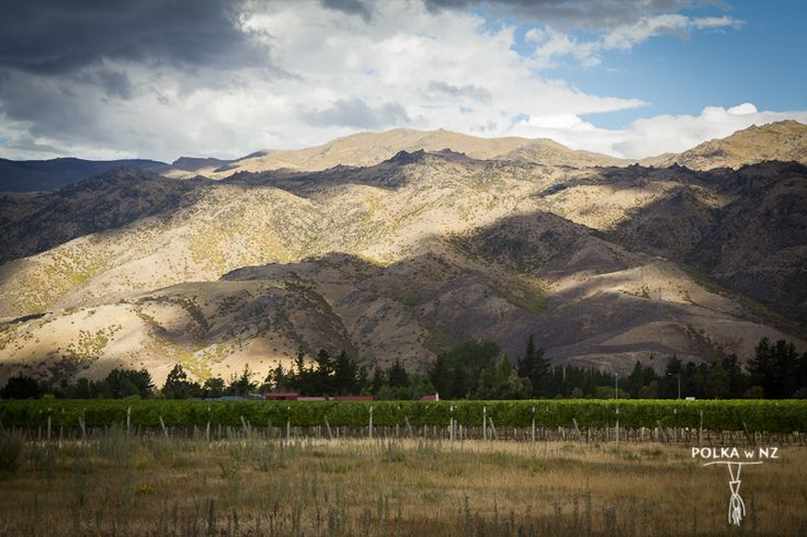Cromwell, Central Otago, South Island, New Zealand
