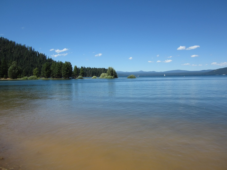 17 best images about pictures from around the susanville for Lake almanor fishing report