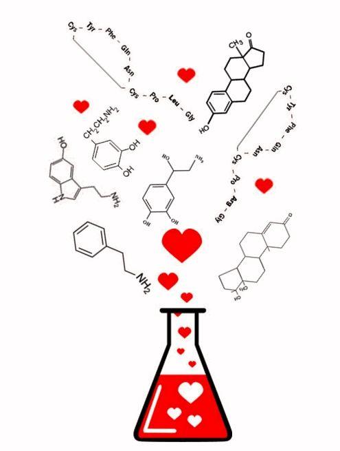química do amor - Pesquisa Google