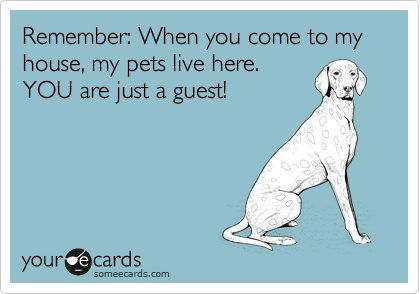 HAHAHA! YES!: Absolute, Pets Living, Amen, Remember This, House'S And, Front Doors, So True, Agree, Animal